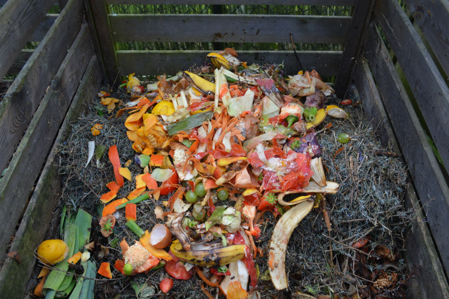 Add kitchen scraps to the compost bin or pile rather than the garbage.