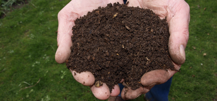 composting myths