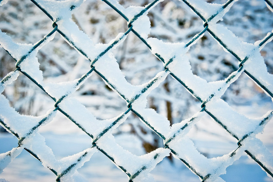 wire fence in winter