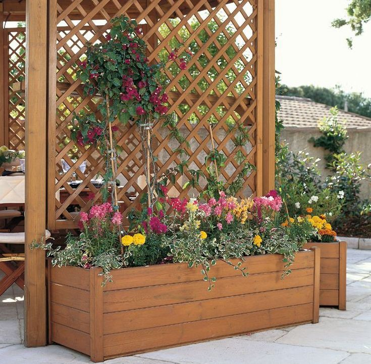 24 Ways To Grow Vertical And Use Your Garden Space