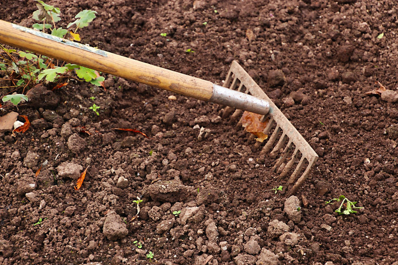 how to prepare the soil